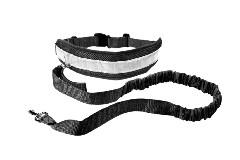 ceinture mains libres pour chien